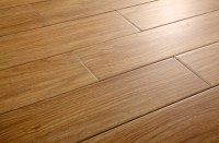 FREE Samples: Salerno Ceramic Tile - Sterling Wood Birch ...