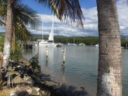 Marina Port Douglas