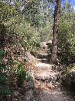 Eurobin Falls steps