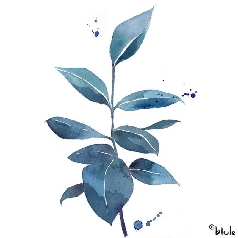 blue leaves blule