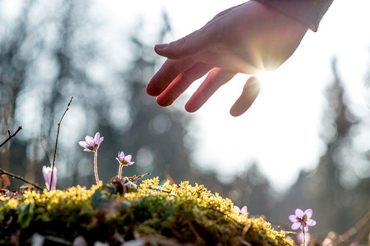 慈悲心是什麼?