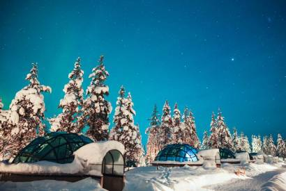 Image result for winter igloo in woods