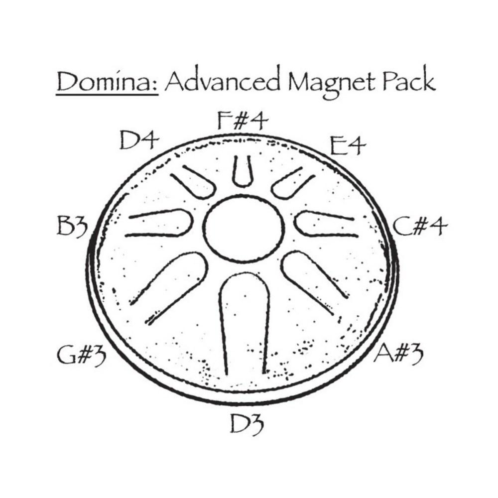 medium resolution of  idiopan domina advanced magnet pack