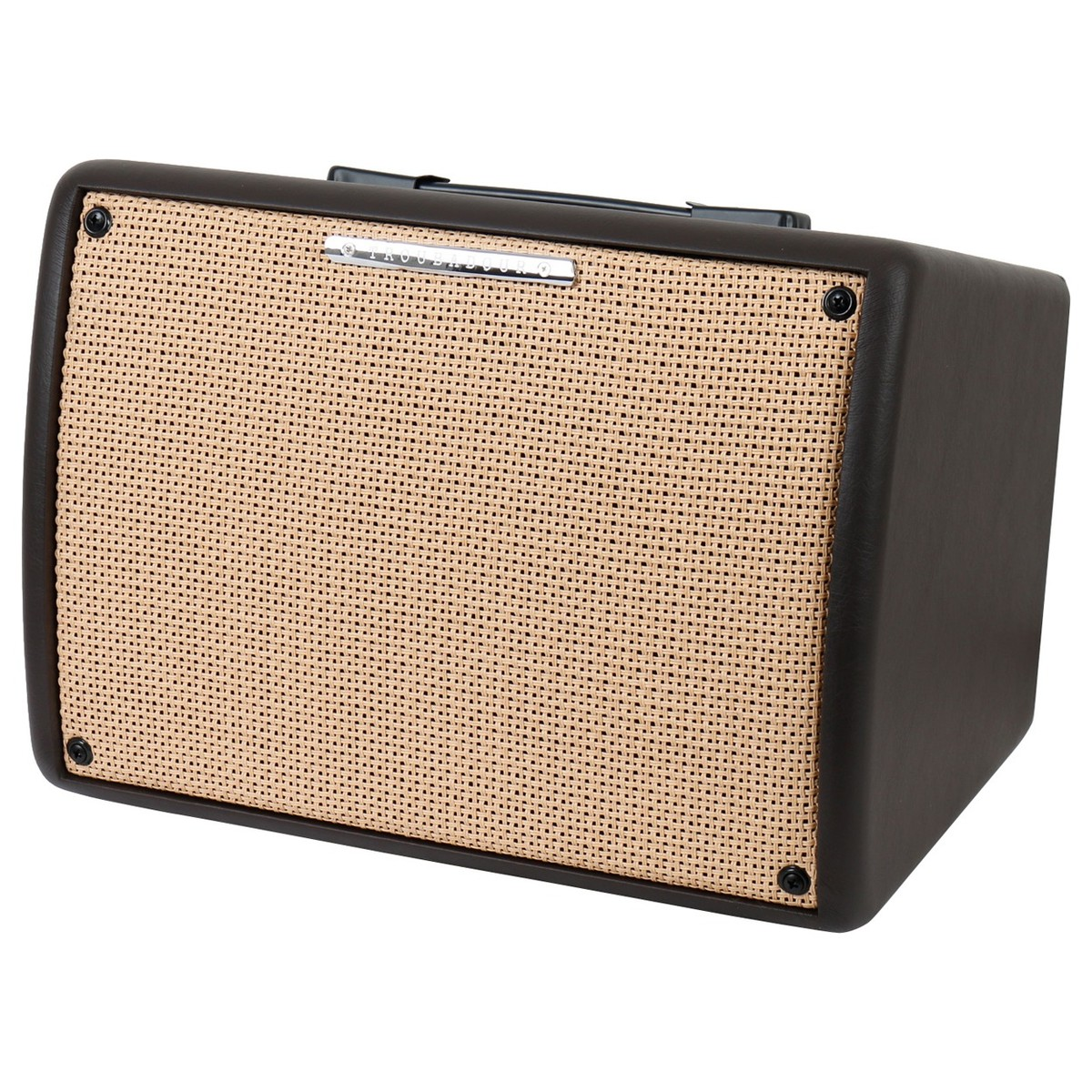 hight resolution of ibanez troubadour t30 ii acoustic guitar combo amp