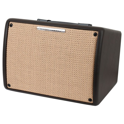 small resolution of ibanez troubadour t30 ii acoustic guitar combo amp