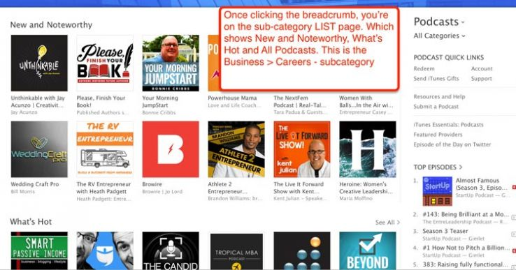 The business-careers subcategory in iTunes.