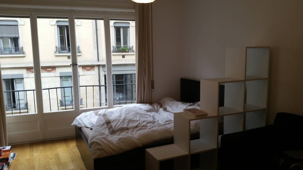 Au centre ville de Genve magnifique appartement traversant  Location appartements Geneva
