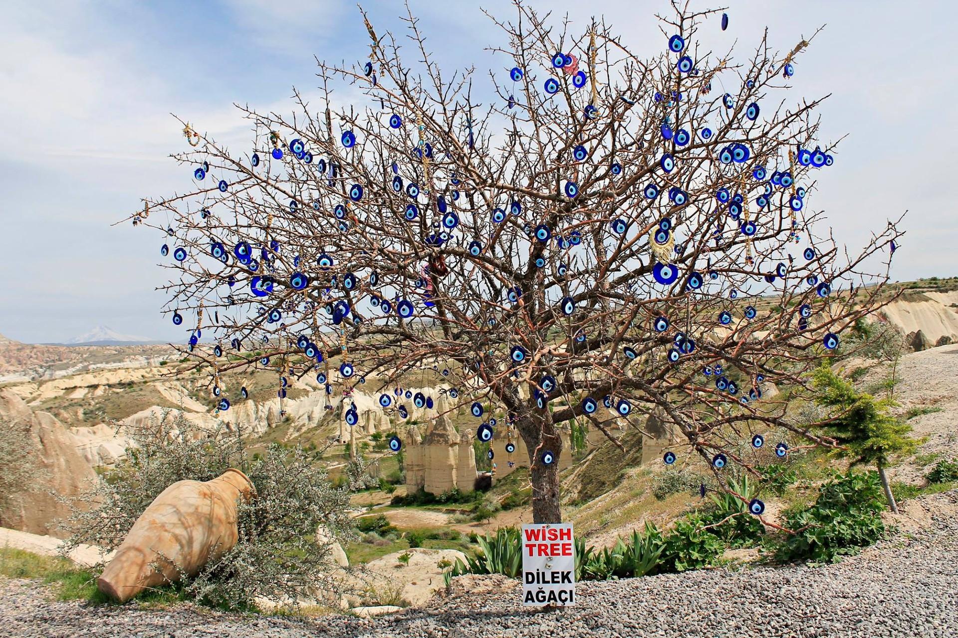 Cappadocia The Fairy Chimneys Erasmus Blog Kayseri Turkey