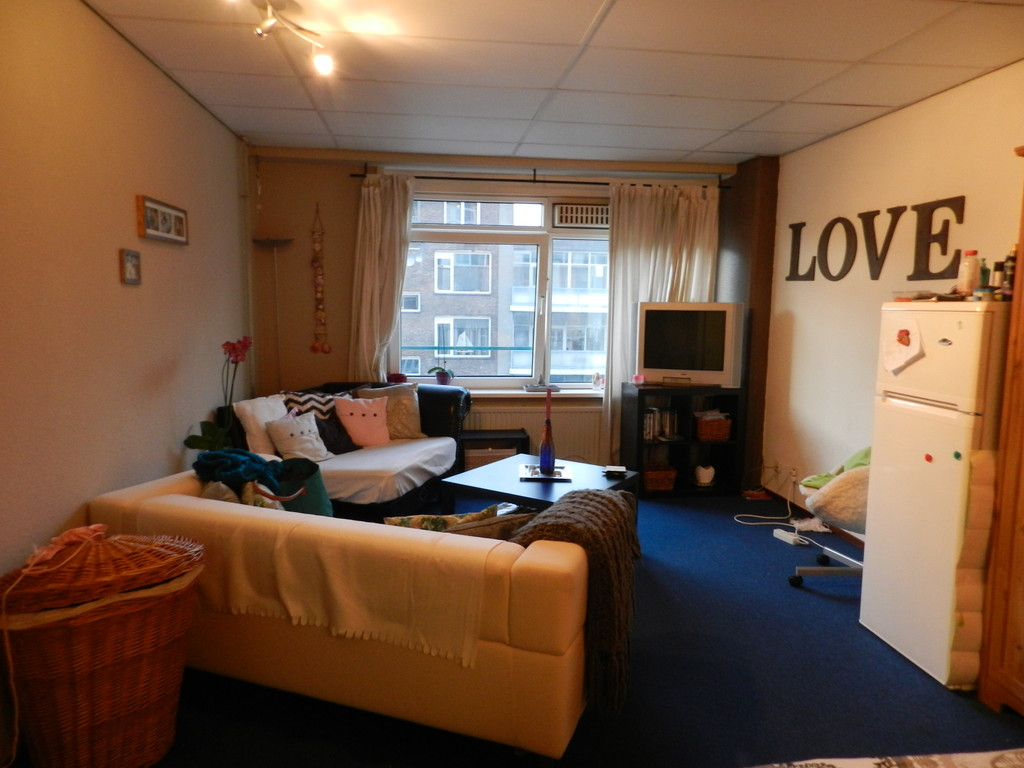 Large and Cozy room in the centrum of Rotterdam  Room for rent Rotterdam
