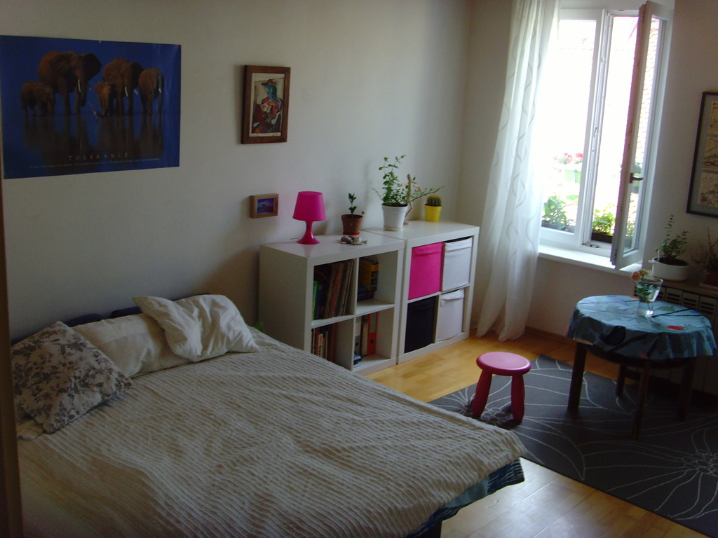 One room apartment in the very centre of Graz next to Tu Graz and Jakominiplatz  Flat rent Graz