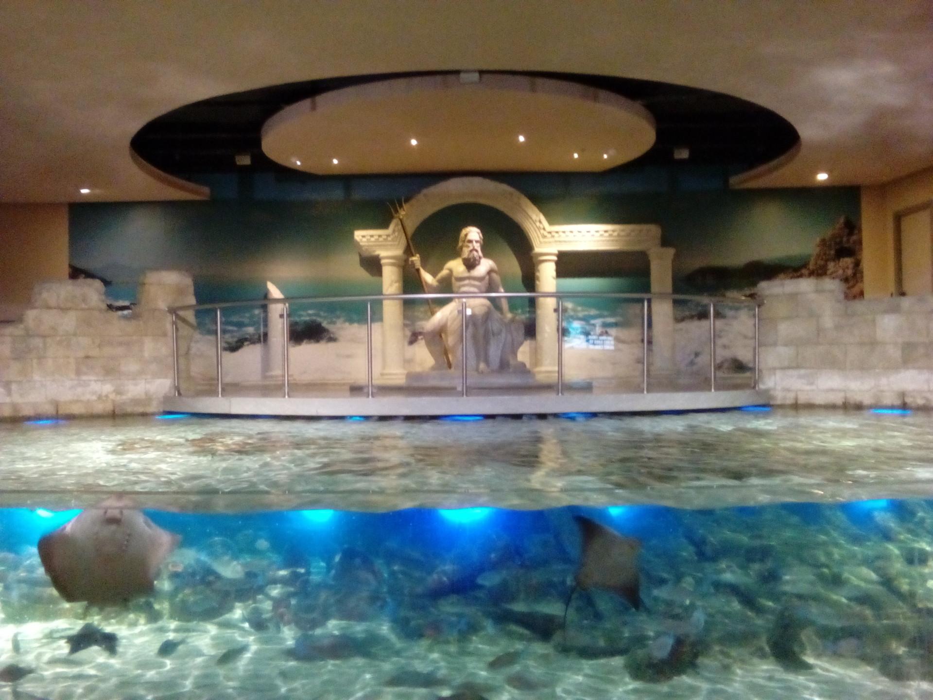 Image result for aqua florya