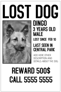 make missing pet flyers in minutes