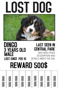 vintage wanted dog missing pet poster