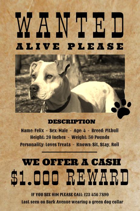 vintage hund gesucht haustier plakat