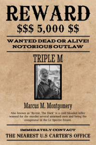 Funny Fake Crimes For Wanted Posters : funny, crimes, wanted, posters, Missing, Person, Posters, Minutes, PosterMyWall