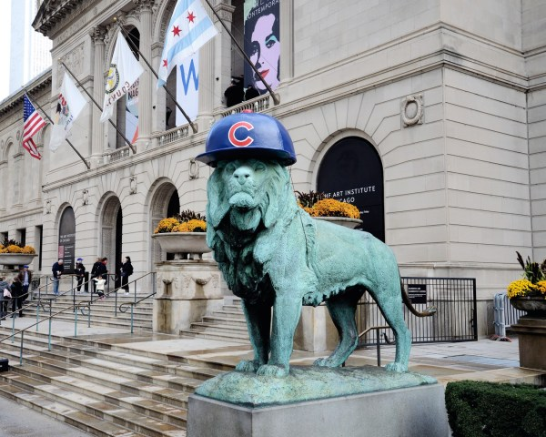 Art Institute Lion Sporting Flat Brimmed Cubs Hat Chicago Framed Print
