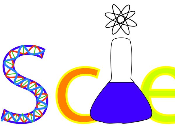 Key Stage 3 Science Biology Assessment