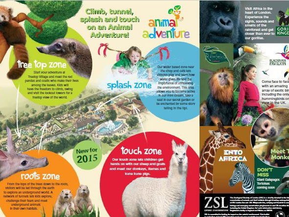 Comprehension London Zoo By Benserghin Teaching Resources