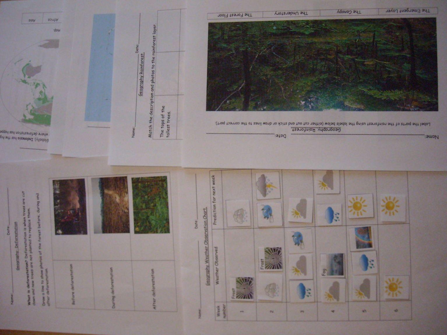 Geography Deforestation Rainforest And Weather Chart Sen