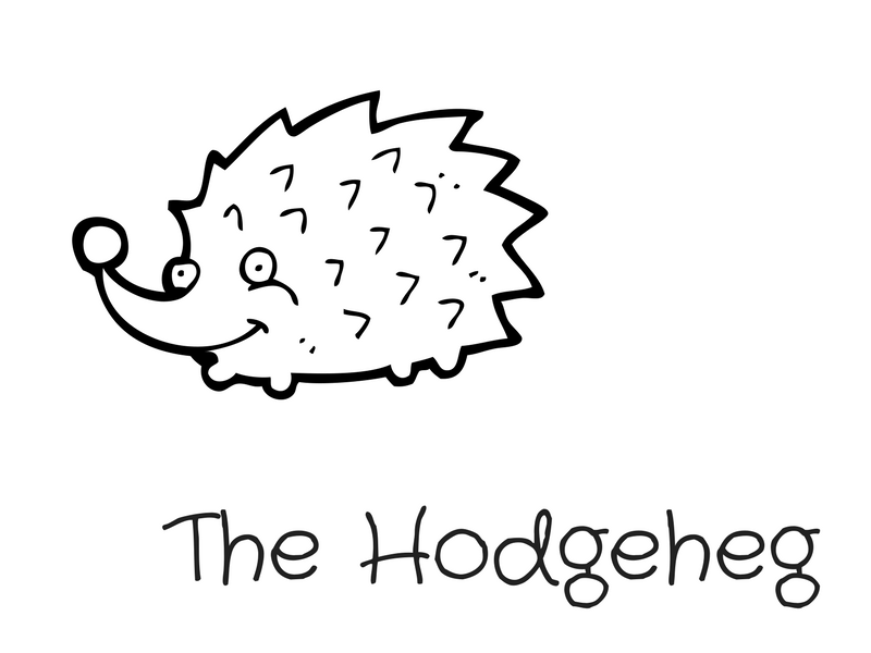 The Hodgeheg Reading Comprehension by