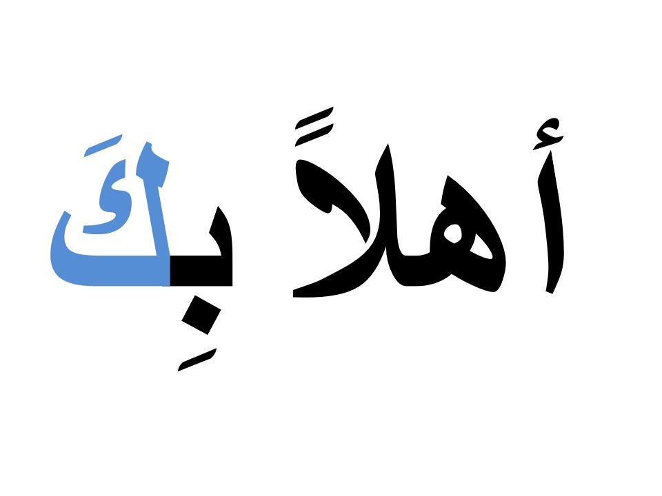 Printable Flash Cards in Arabic (MSA and Levantine) by