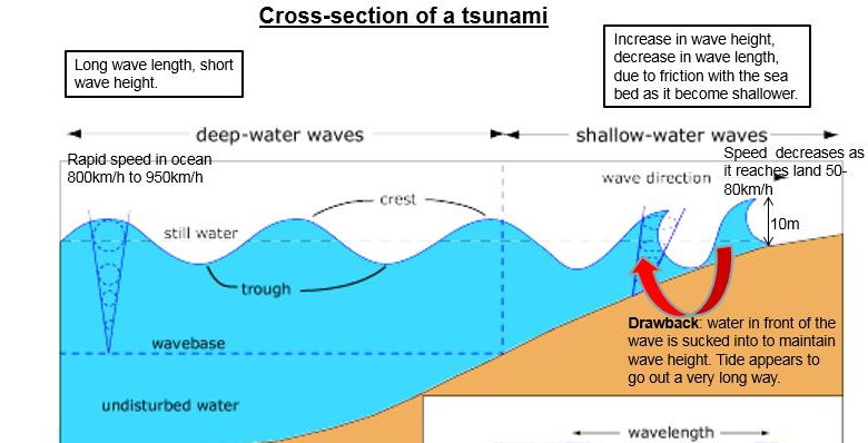 tsunami diagram with labels allis chalmers b wiring a level earthquake case study the sendai japanese by cover image
