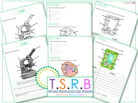 All Worksheets  Plant And Animal Cell Worksheets For ...