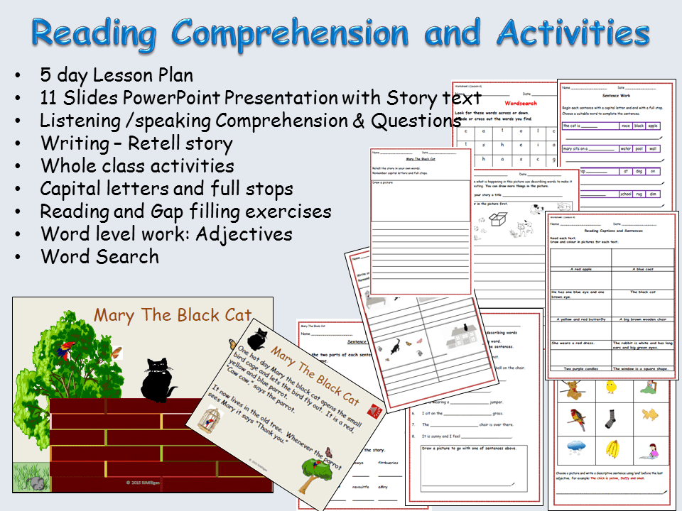 Reading Comprehension, Text, Sentence And Word Work