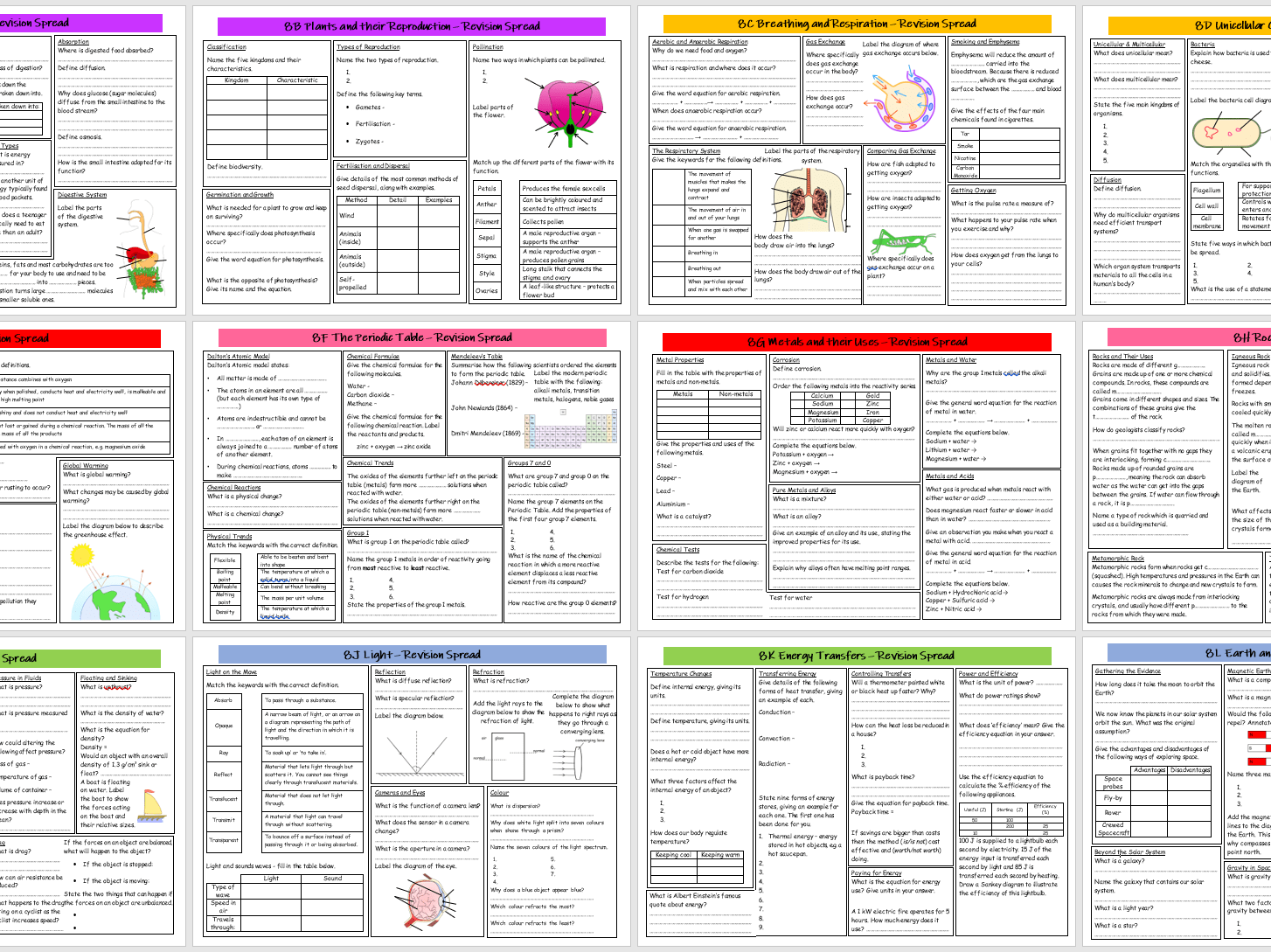 Year 8 Science Revision Spreads With Answers