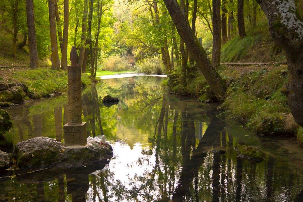 Top 10 Spanish Forests