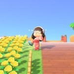 5 Things That Could Use An Update In Animal Crossing New Horizons Allgamers