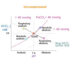 simple metabolic diagram [ 1968 x 1968 Pixel ]