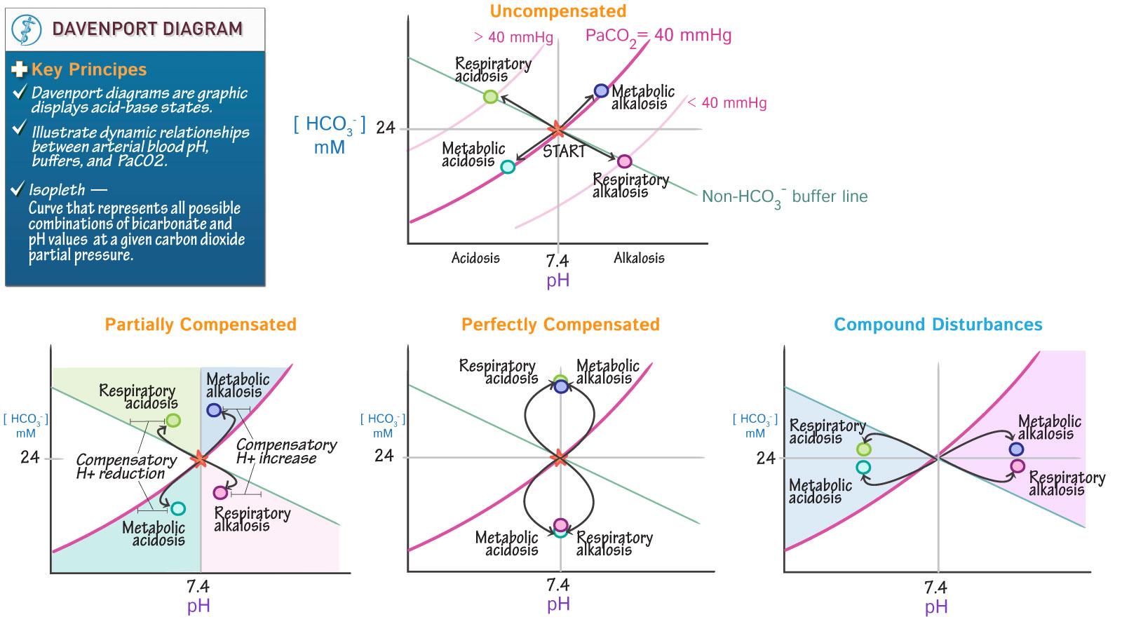 hight resolution of acid base diagram