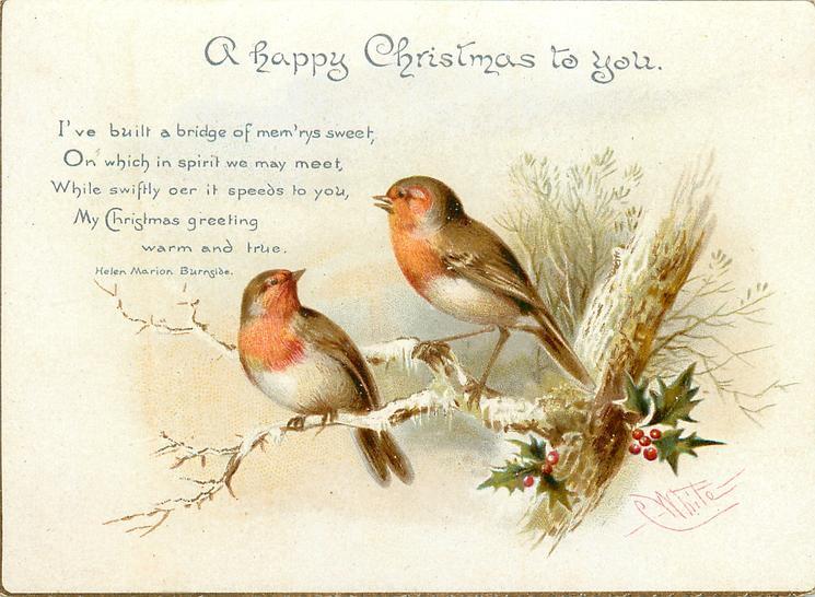 Two Robins On Branch In Winter TuckDB Ephemera