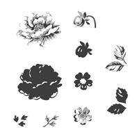 Stippled Blossoms Clear Stamp Set