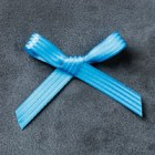 """Pacific Point 3/8"""" Stitched Satin Ribbon"""