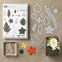 Botanical Blooms Photopolymer Bundle