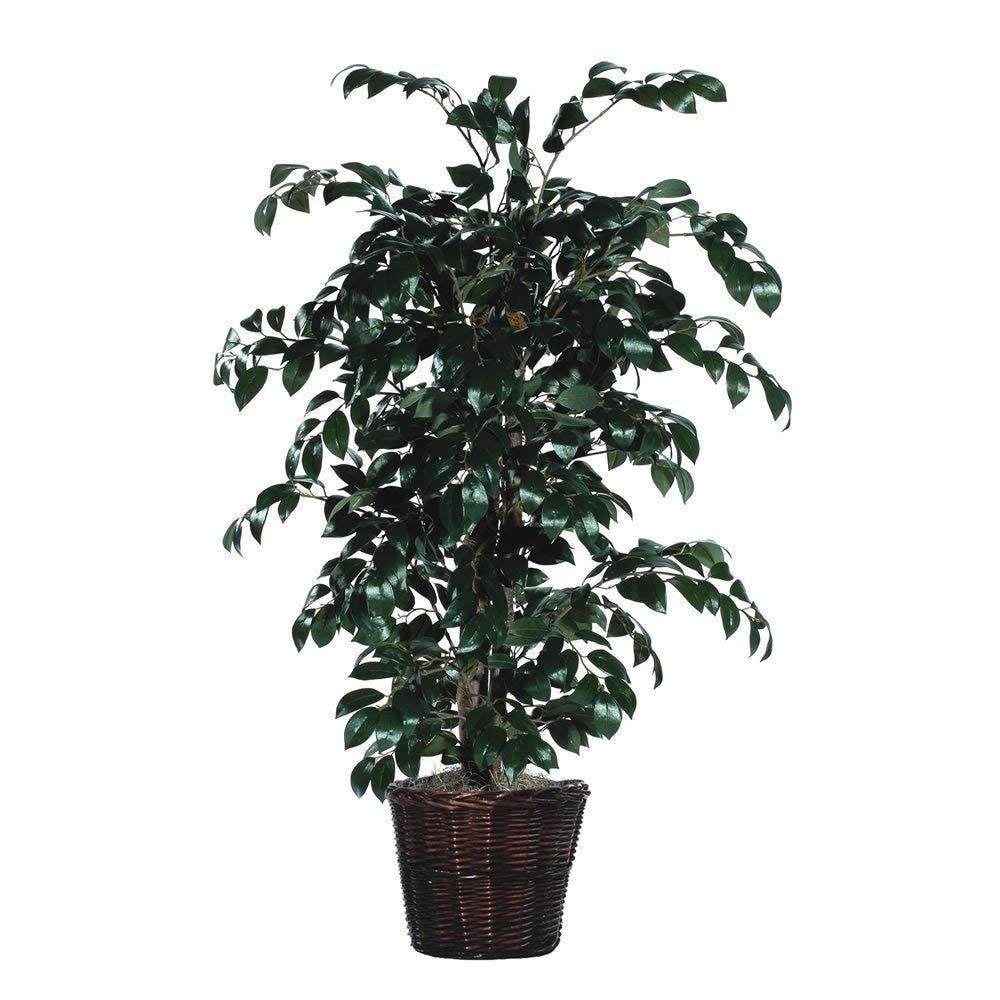artificial, plant, planter, sakaki