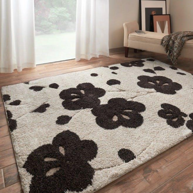midcentury modern, shag rug