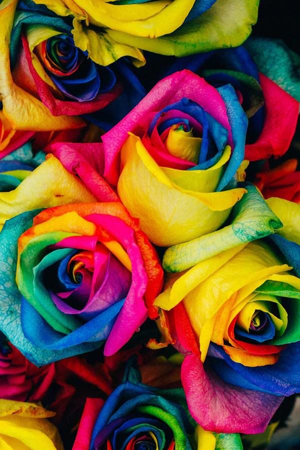 Wholesale Roses DIY Wedding Flowers