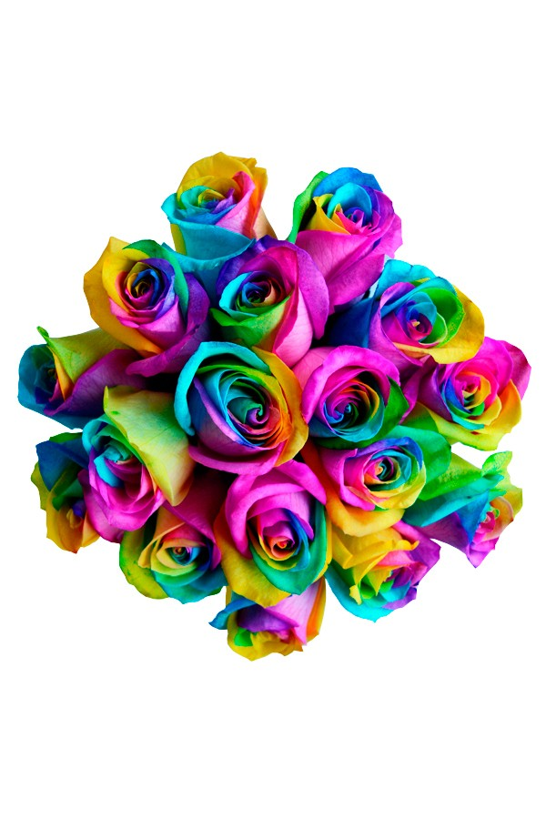 Fall Sunflowers Wallpaper Rainbow Roses Rainbow Roses Delivery Tie Dye Roses