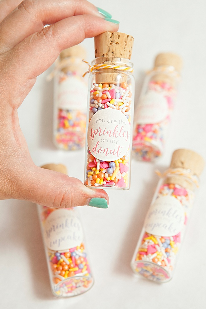 Best DIY Sprinkle Party Favors Ever