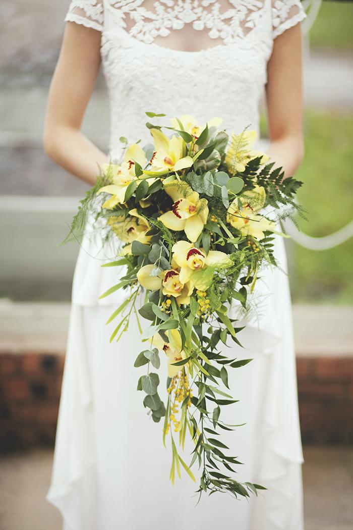 Lavenderblue_Yelloworchids
