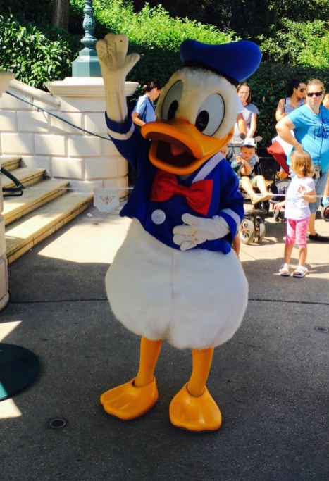 Disneyland Paris, Disneyland® Park, meet Donald
