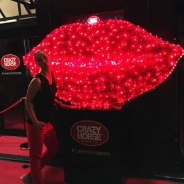 Paris, Crazy Horse Cabaret