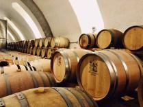 Wine cellar Staatskellerei Zurich