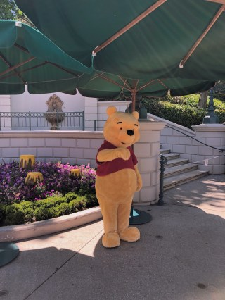 Disneyland Paris, Disneyland Park, Meet&Greet with Winnie the Pooh