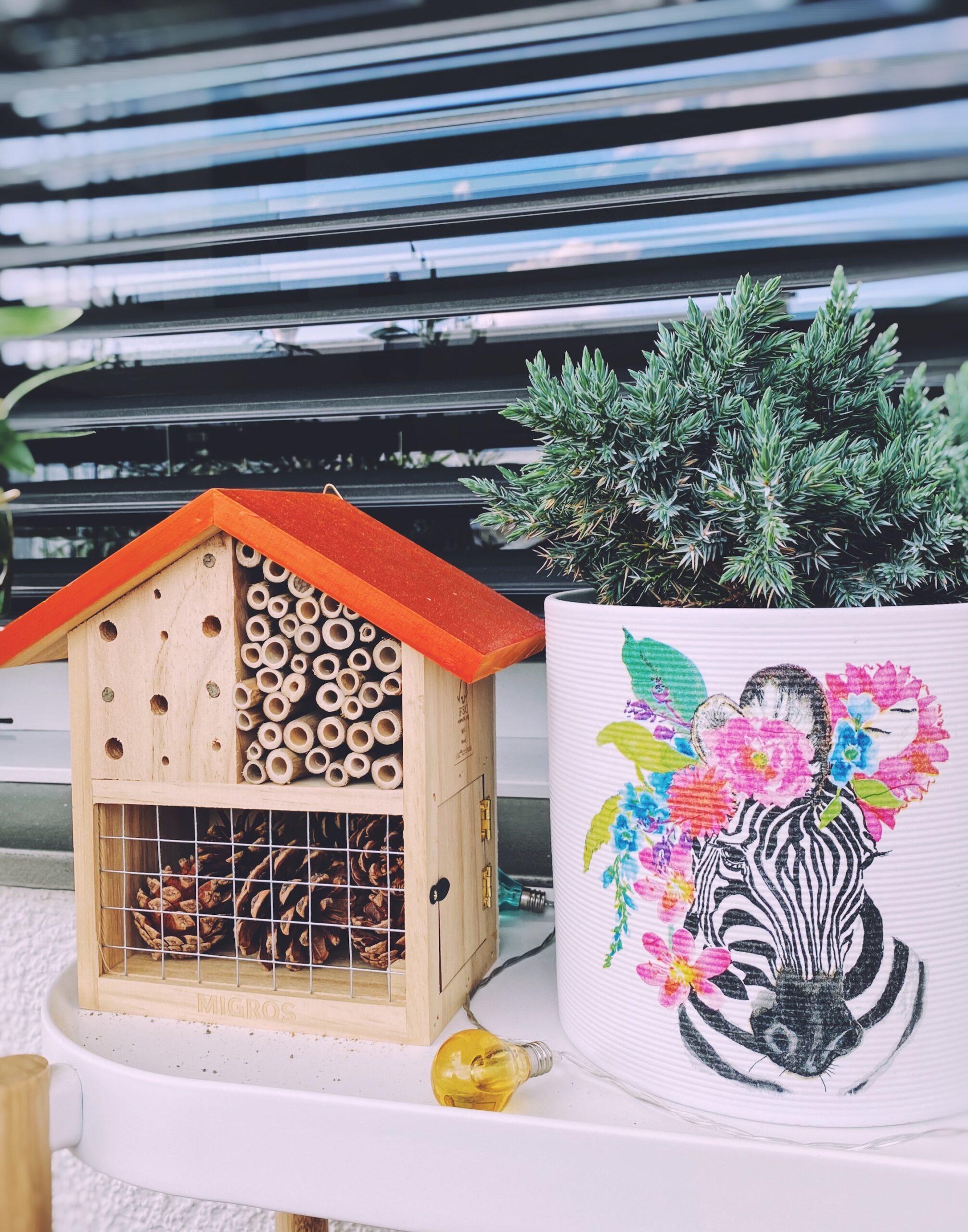 Bee hotel in the urban garden