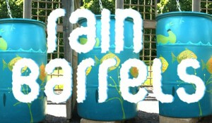 DIY rain barrels