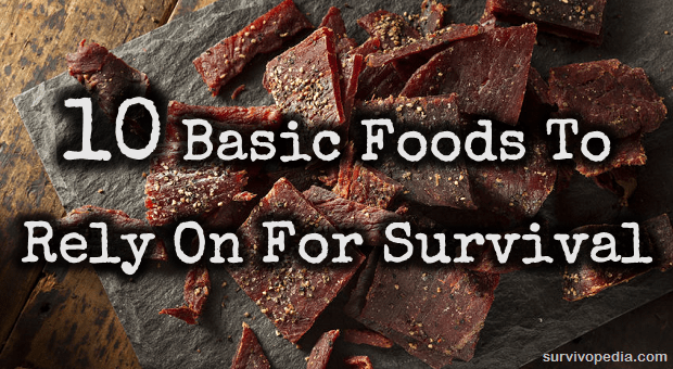 Jerky survival food